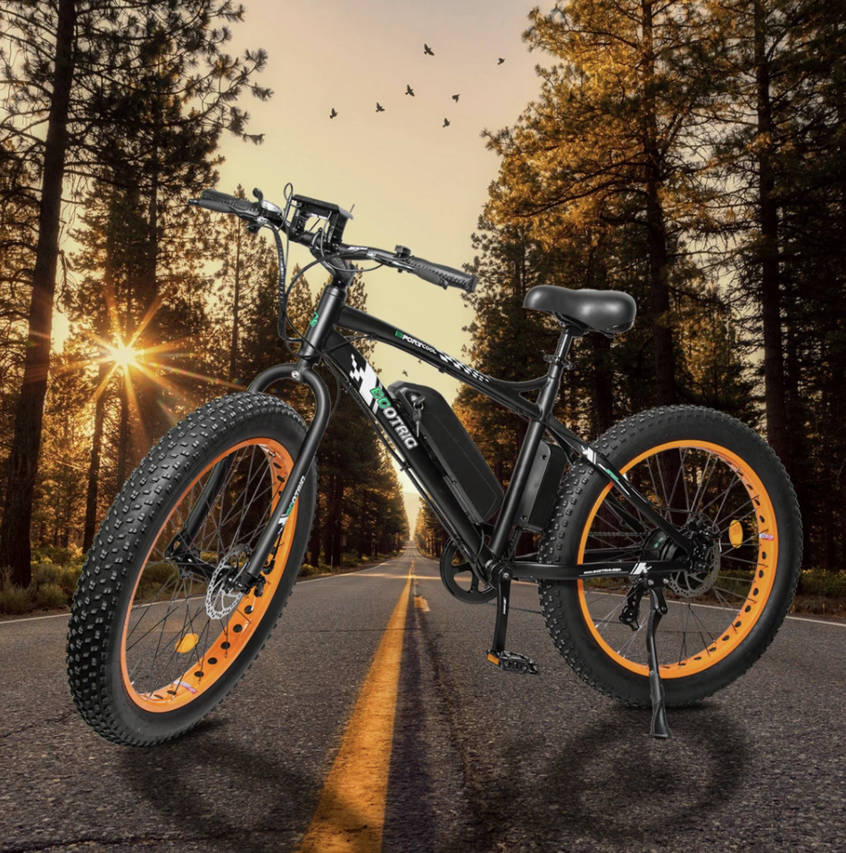Ecotric Fat Tire bike on the road